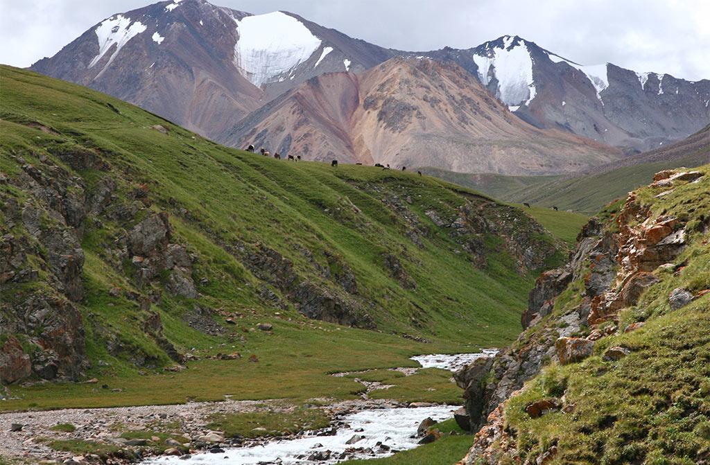 Kol Ükök, Kyrgyzstan