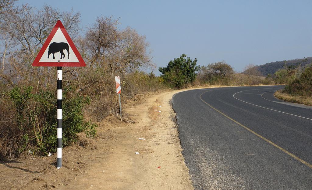 Reisverslag Mpumelanga