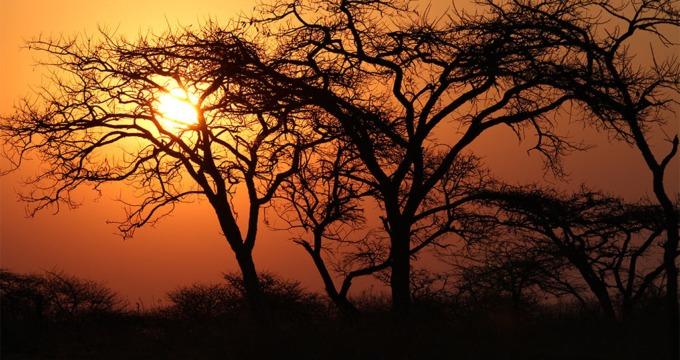Reisverslag Zuid-Afrika Kwazulu Natal