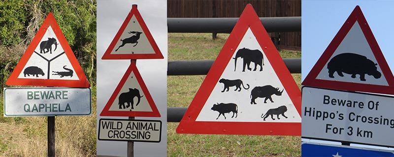 Wildlife Verkeersborden