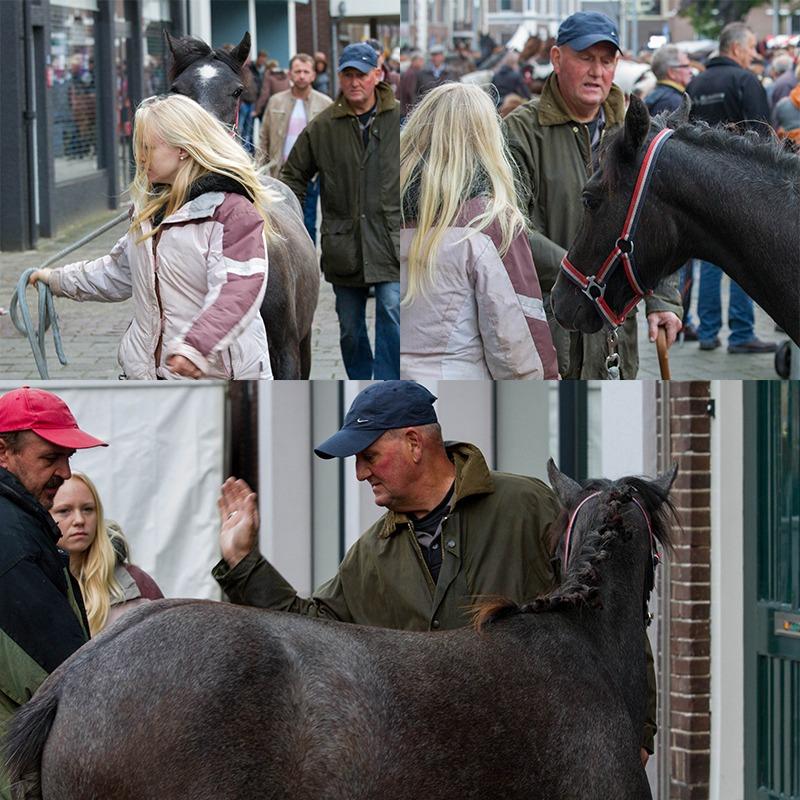 Paardenverkoop Elst