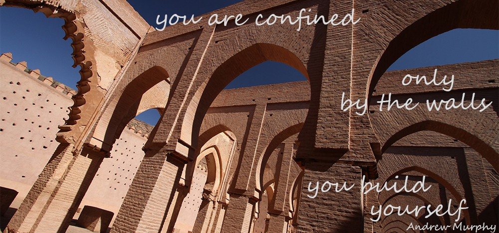 Reisquote - You are confined only by the walls you build yourself