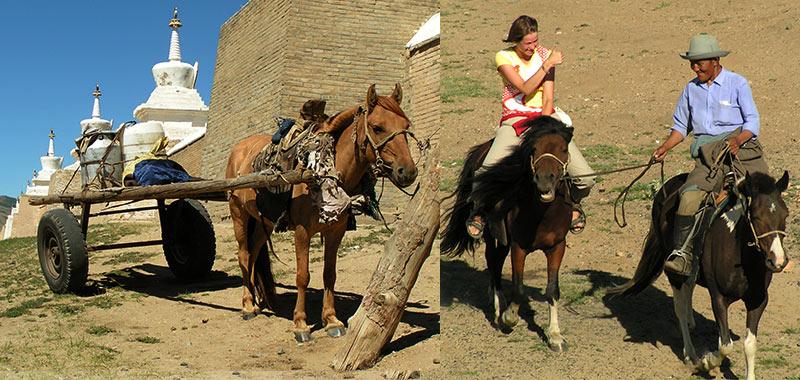 Paardrijden Karakorum