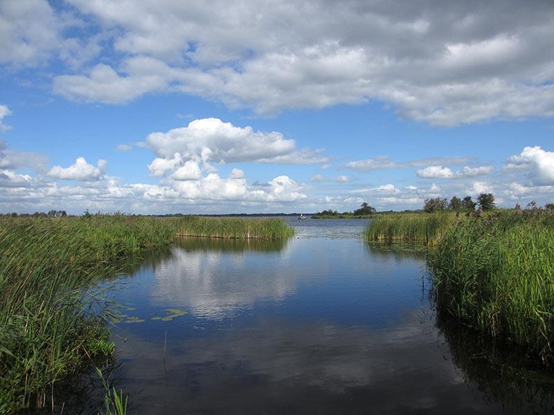 Nationaal Park de Wieden