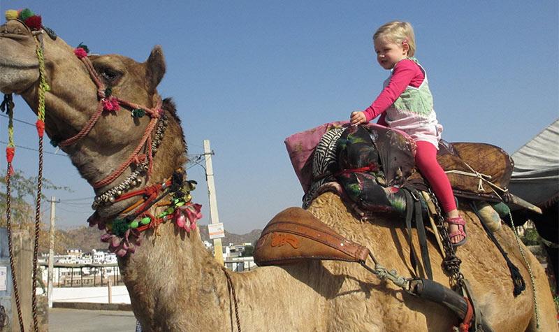 kamelen safari met kinderen