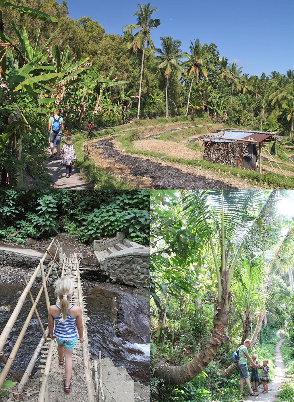 Bali zonder toeristen - Munduk