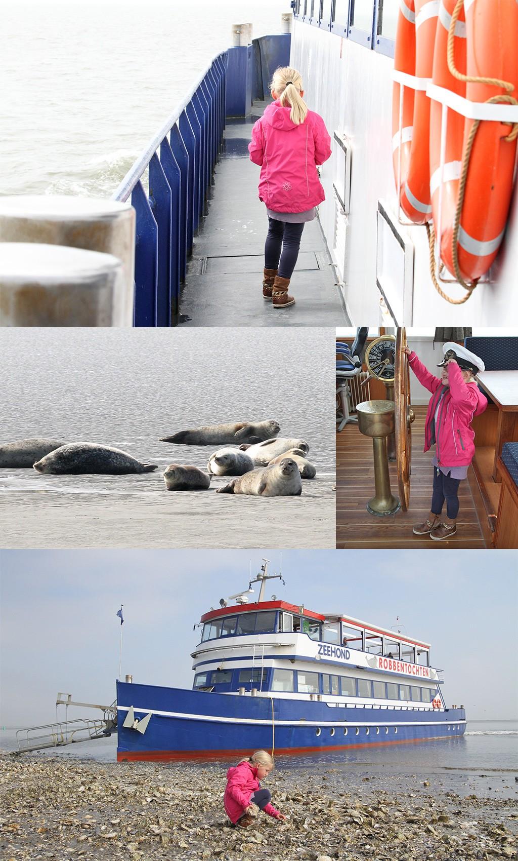 Doen op Ameland met kinderen - zeehondentocht