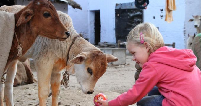 India met kinderen Reisfilm