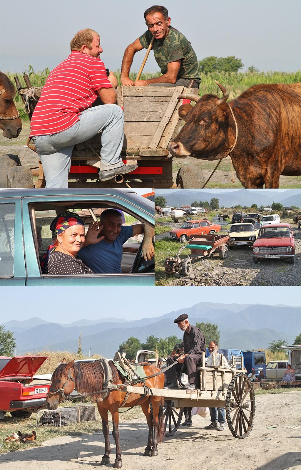 Kabali animal market - Kakheti
