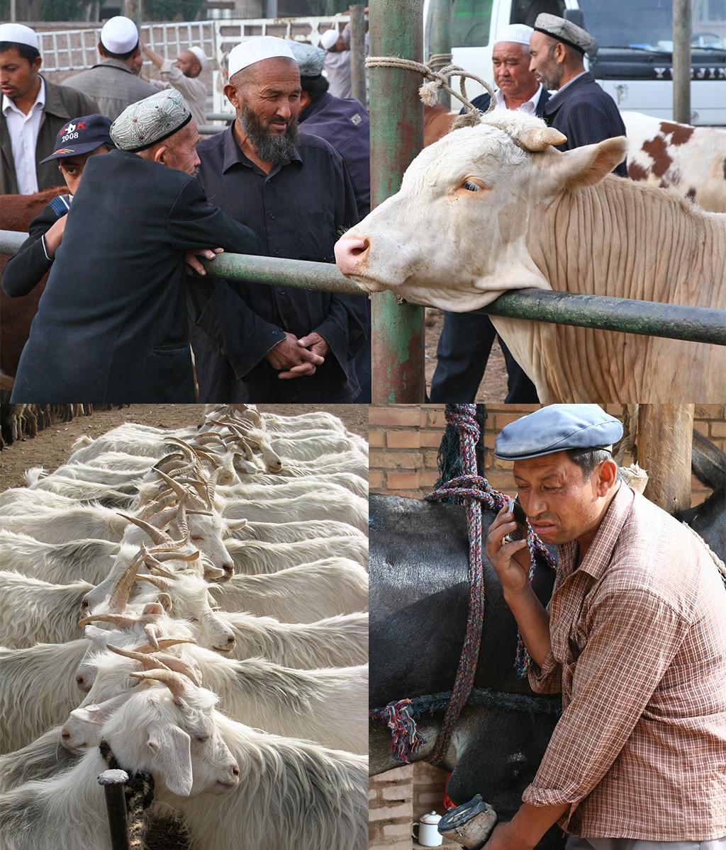 Kashgar veemarkt