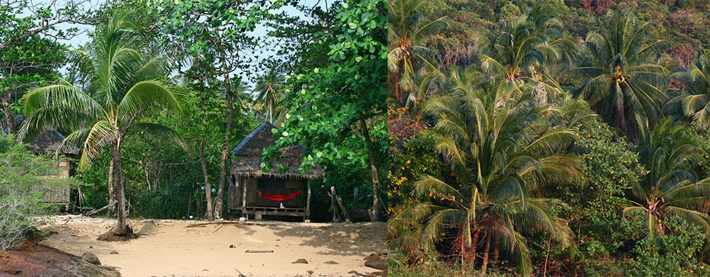 Eilandhoppen Thailand kan met elk budget