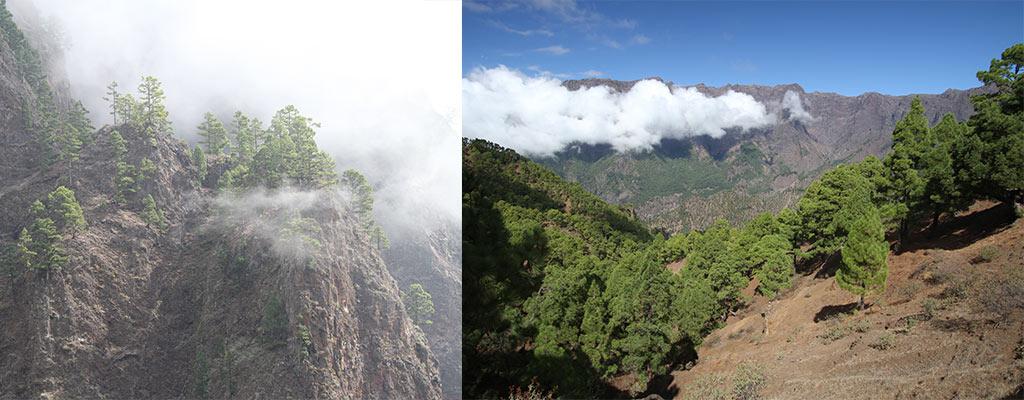 La Cumbrecita La Palma