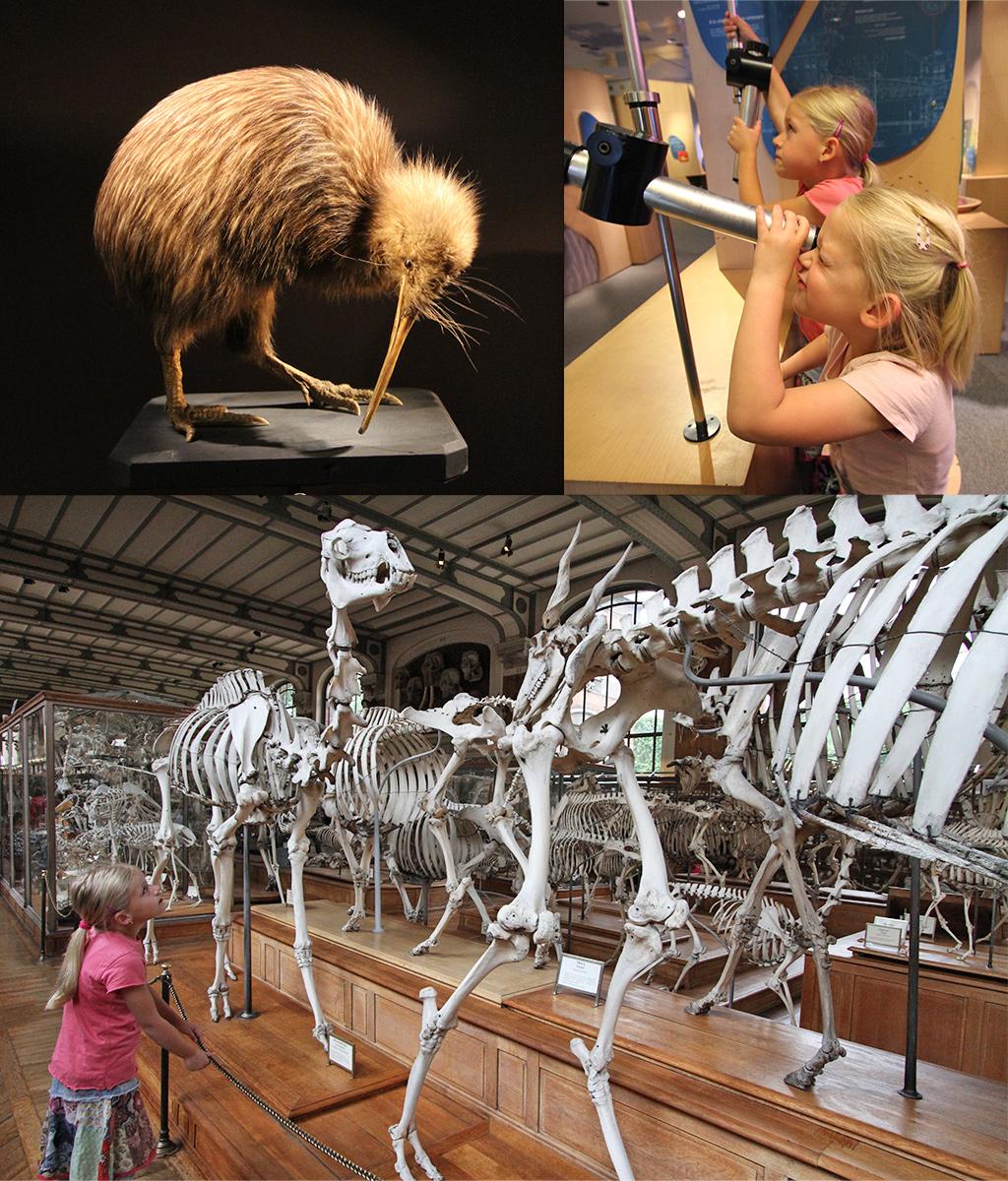 Parijs met kinderen - Jardin des Plantes musea