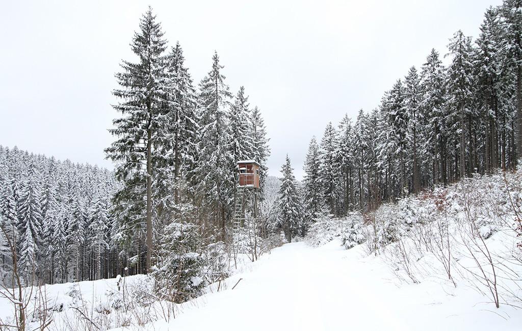 Rothaargebirge januari