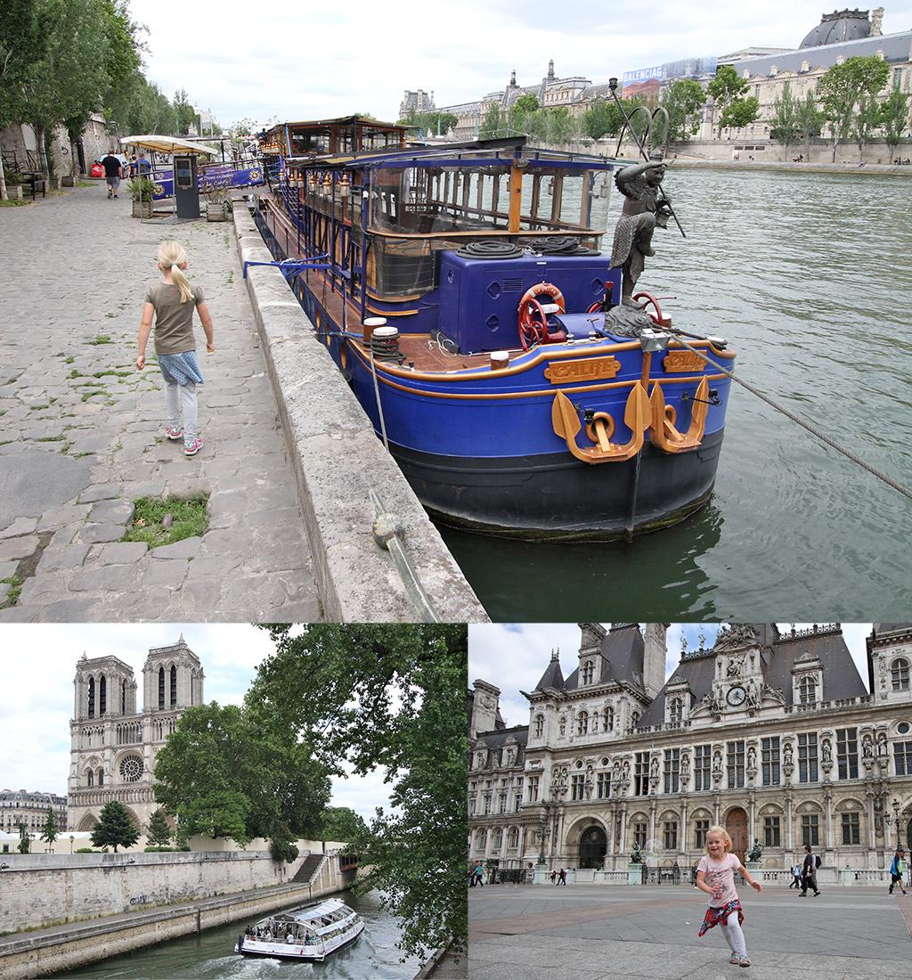 Seine en Notre Dame Parijs