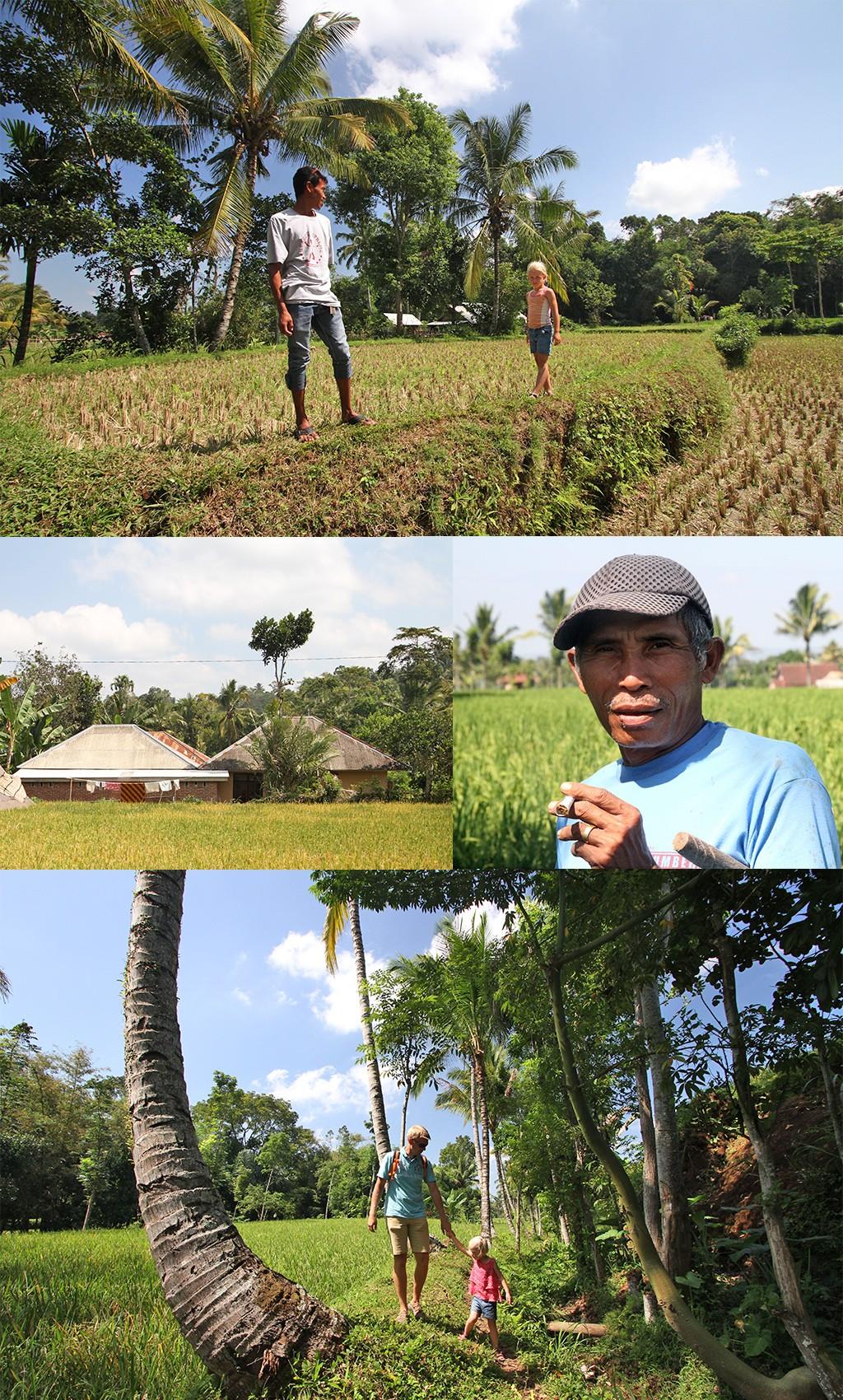 Tetebatu wandeling door natuur en dorpjes