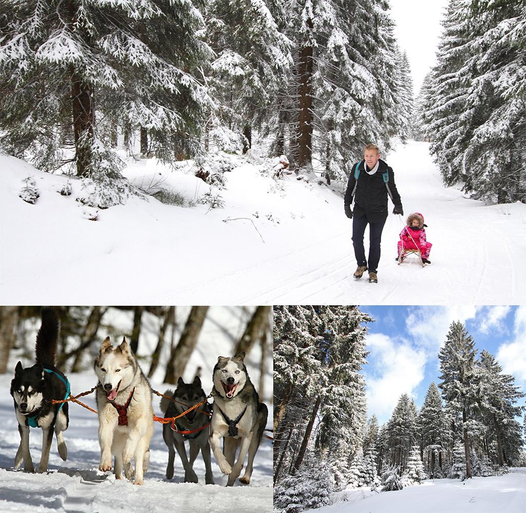 Thüringer Wald met kinderen