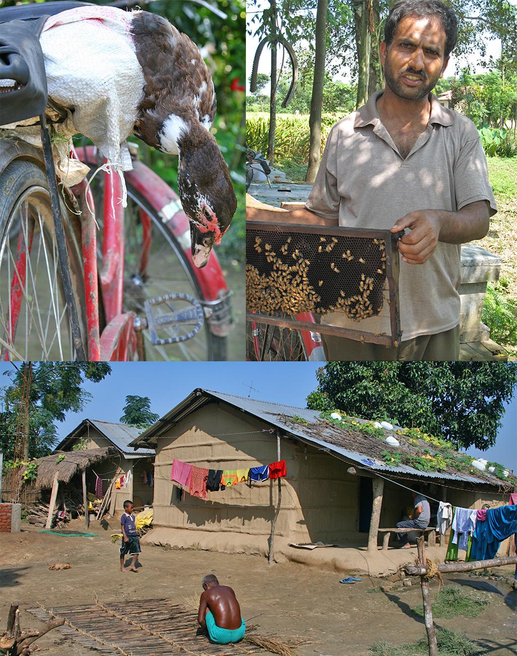Tharu dorpje nabij Chitwan National Park