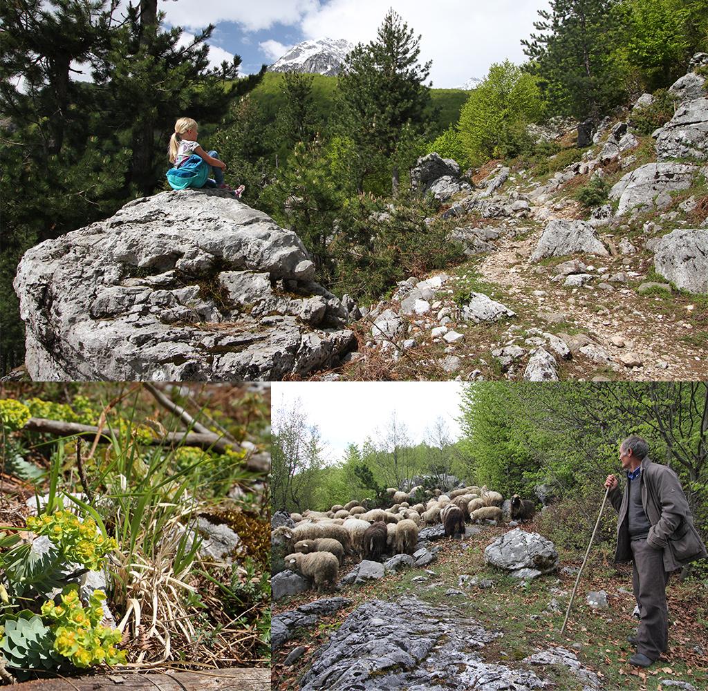 hiking in het noorden van Albanië