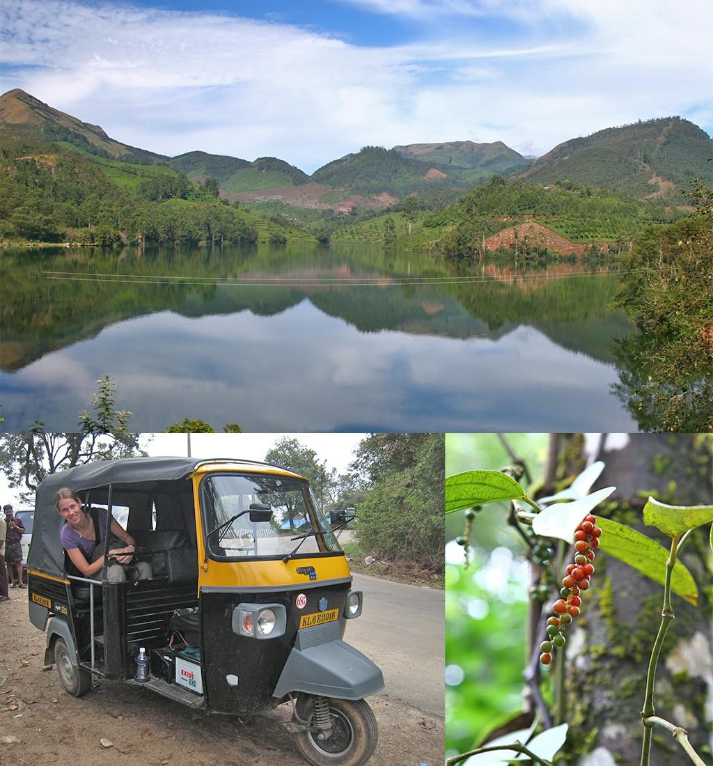 Vanuit Munnar Kerala verkennen met tuktuk