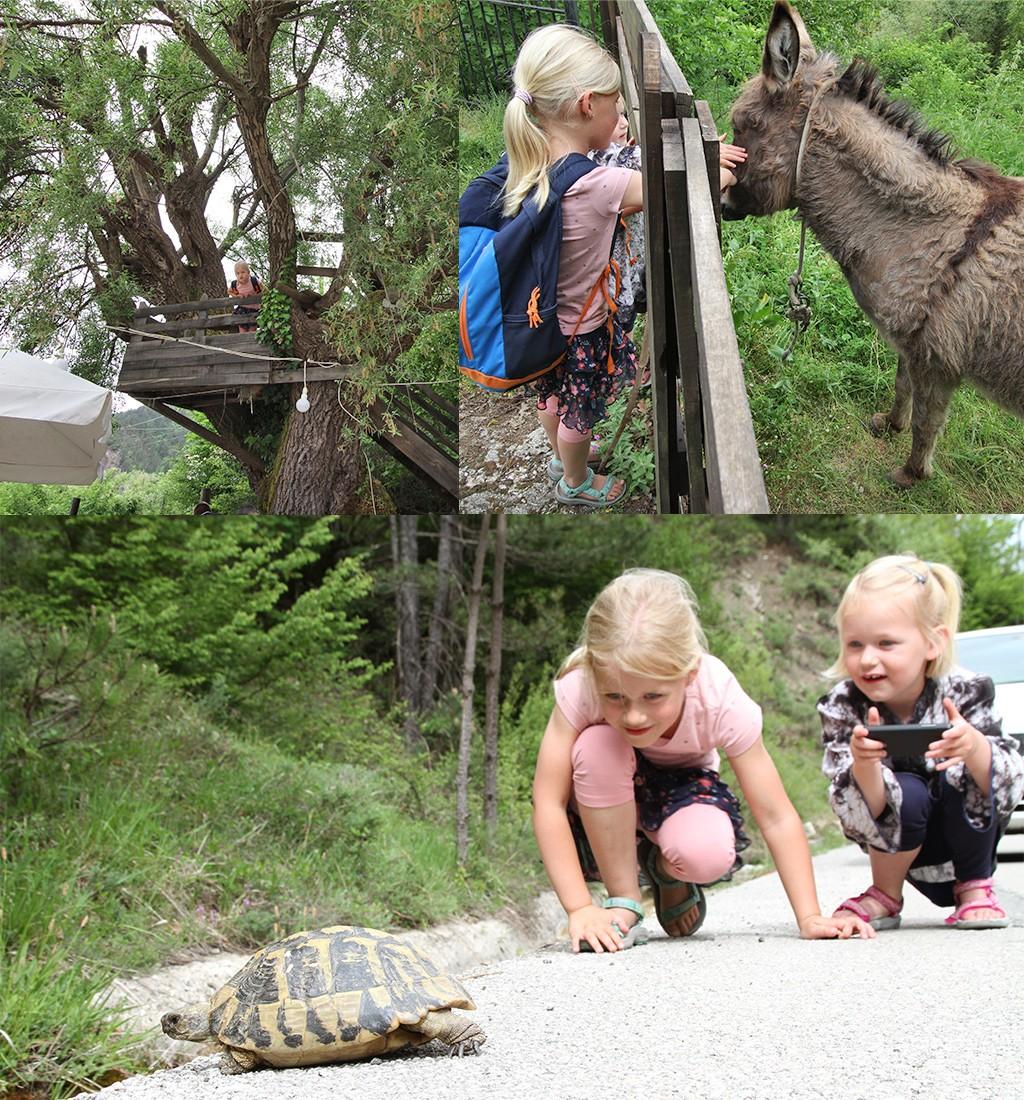 Vikos kloof en Zagoria met kinderen
