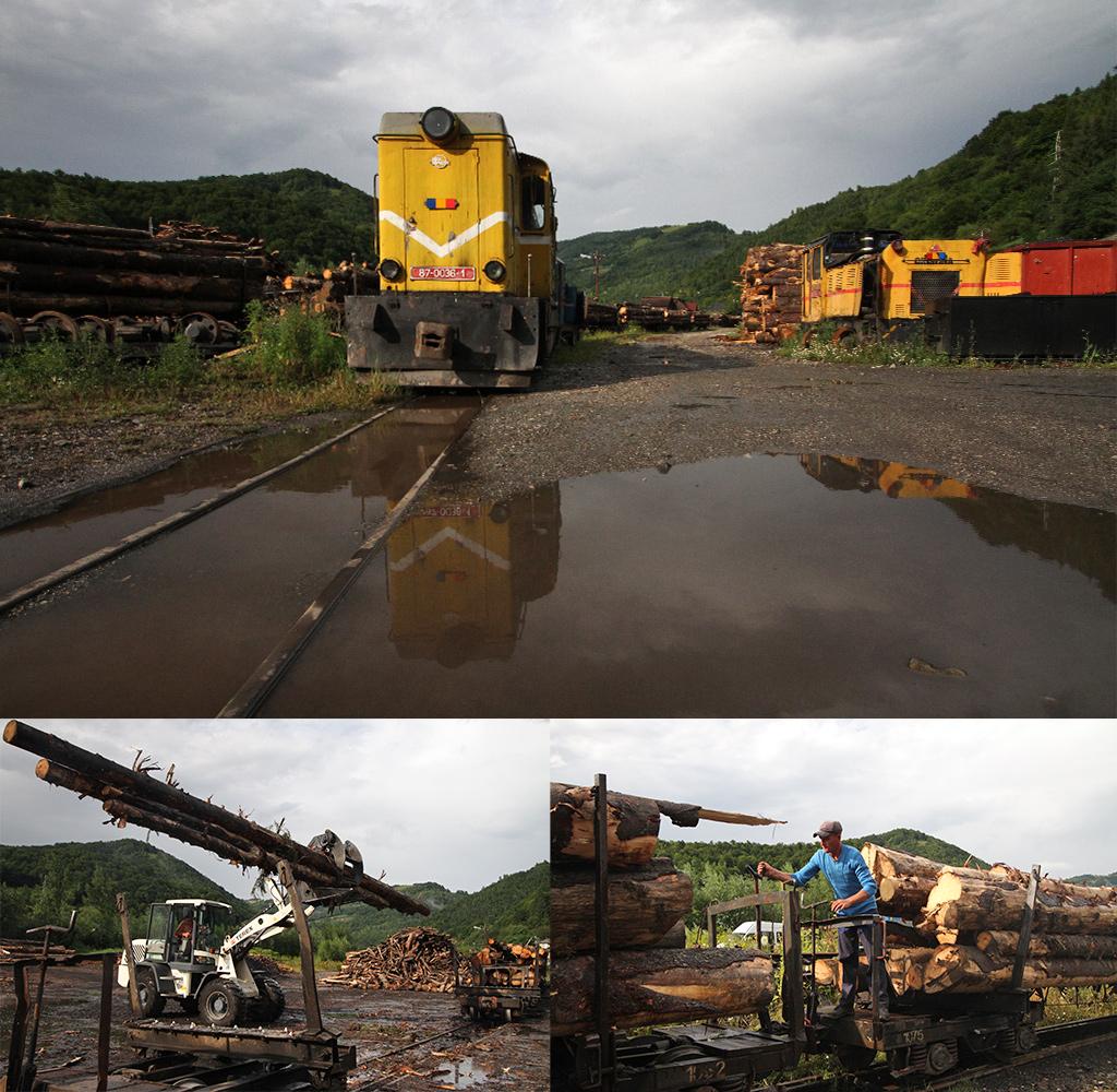 Viseu de Sus hout treinen