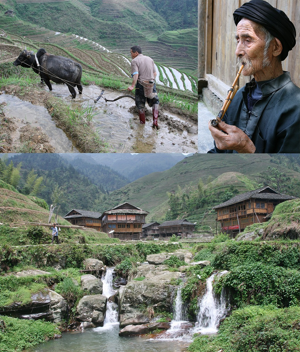 Wandeling Long Ji rijstterrassen