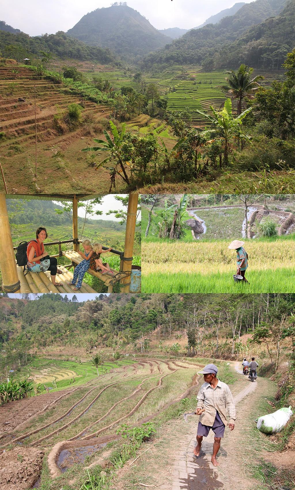 bezienswaardigheden Yogyakarta - Windusari Java