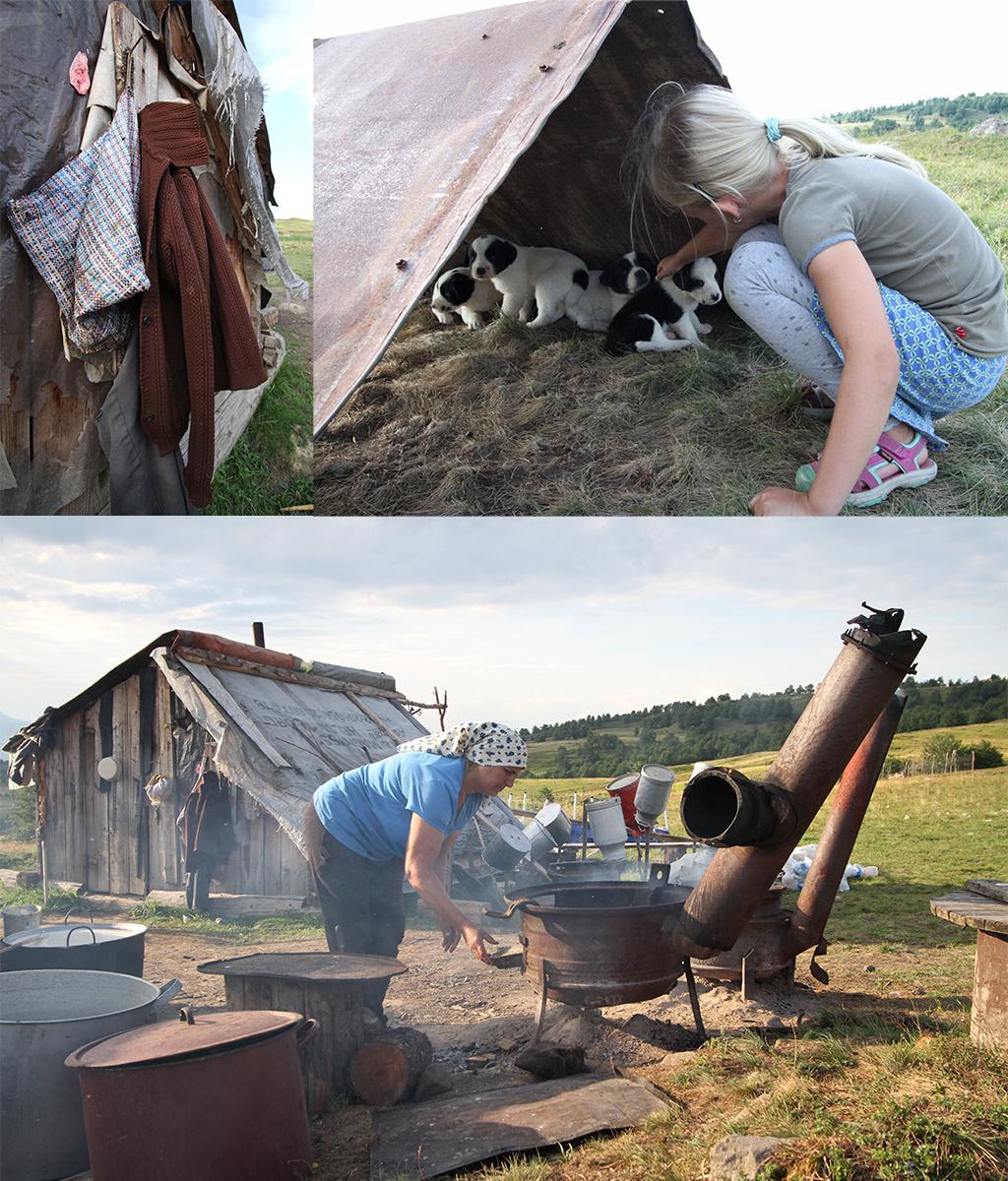 aankomst bij de schaapherders