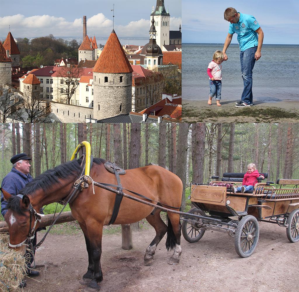 budget vliegvakantie met gezin-Tallinn