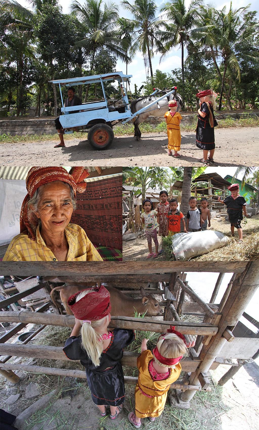 ecotourisme op Lombok - Setanggor