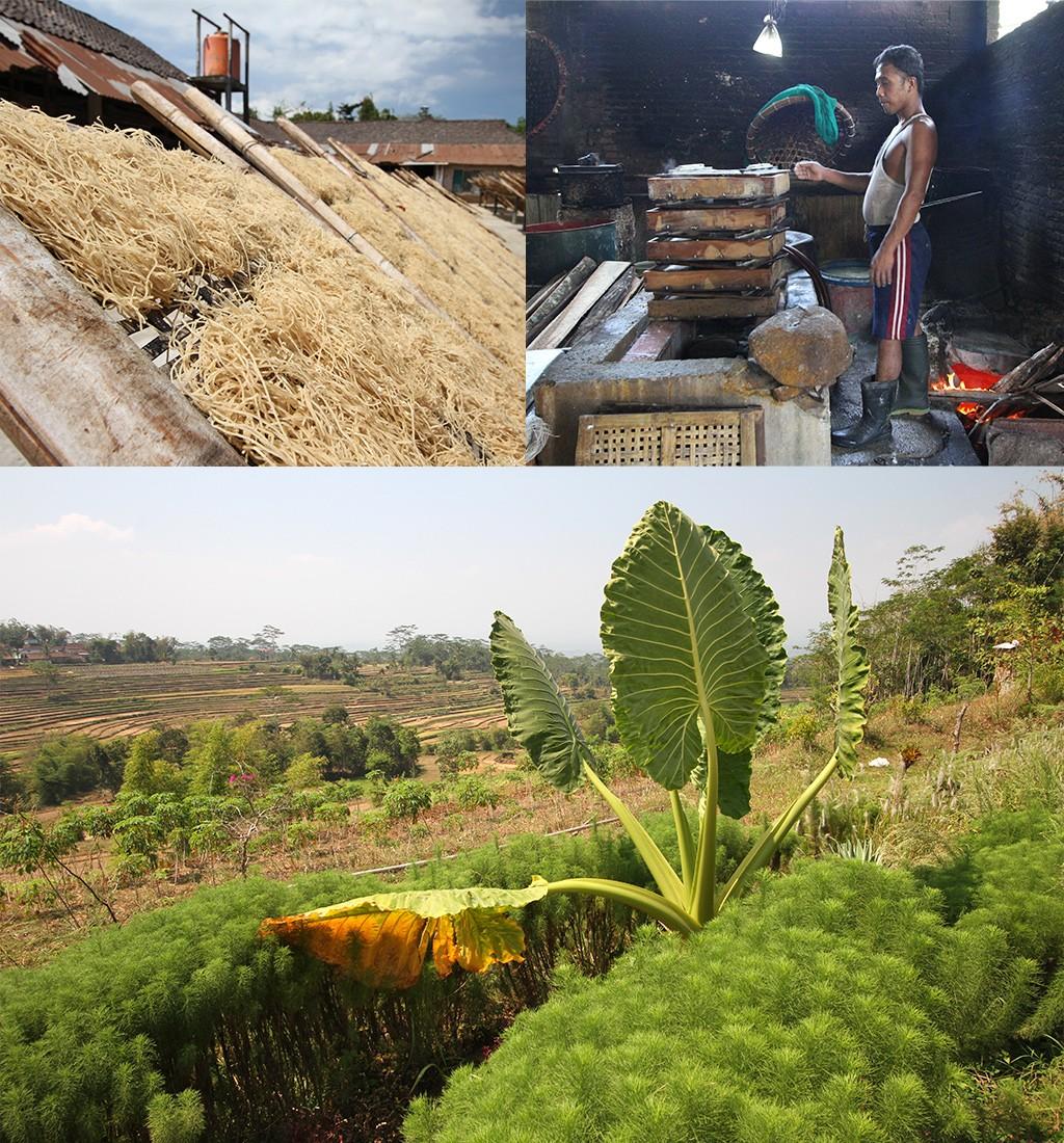 fabriekjes en mooie landschappen van Java