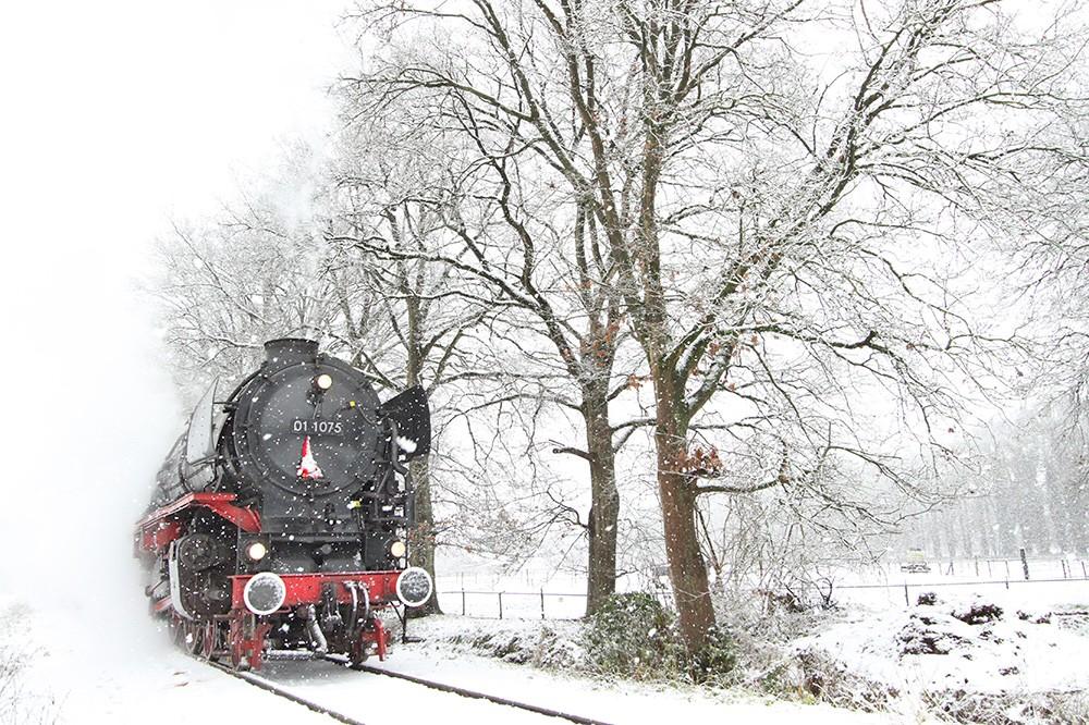 fotografie in de sneeuw