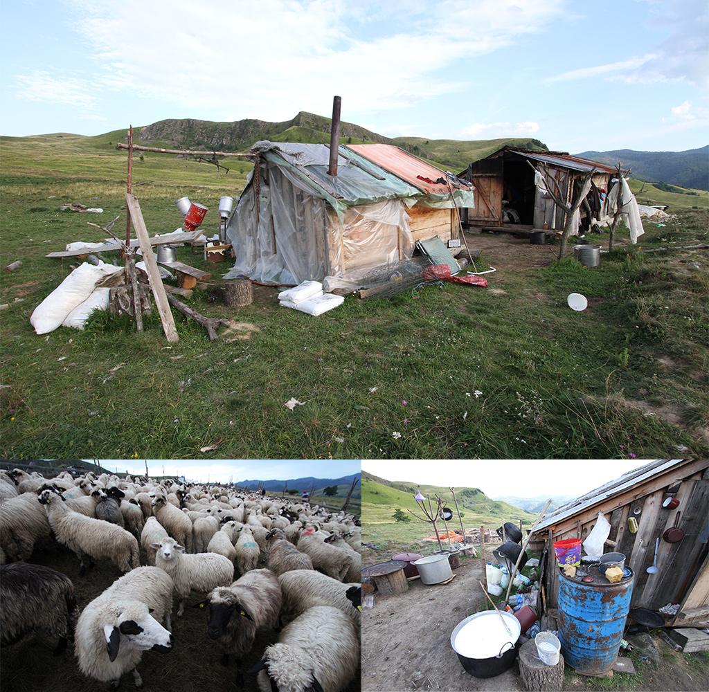 huisvesting herders omgeving Breb