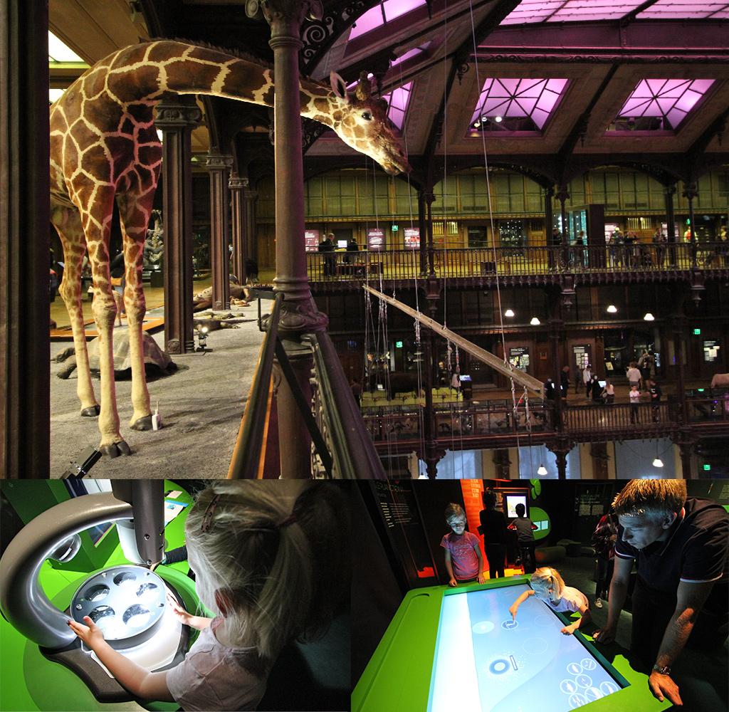 musea Jardins des Plantes - Parijs met kinderen