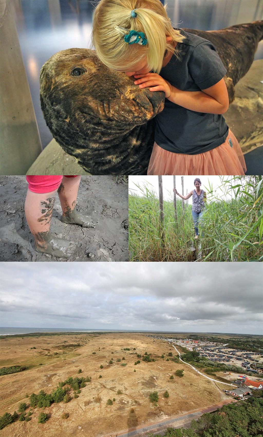 natuurcentrum en vuurtoren Ameland