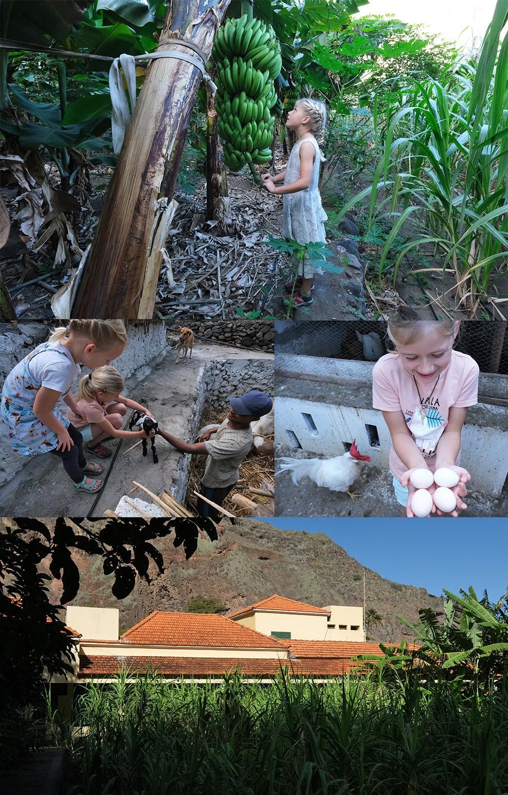 onze mooiste accommodatie op Kaapverdië met kinderen