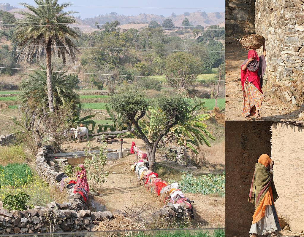 platteland rondom Udaipur gekleurde sari's