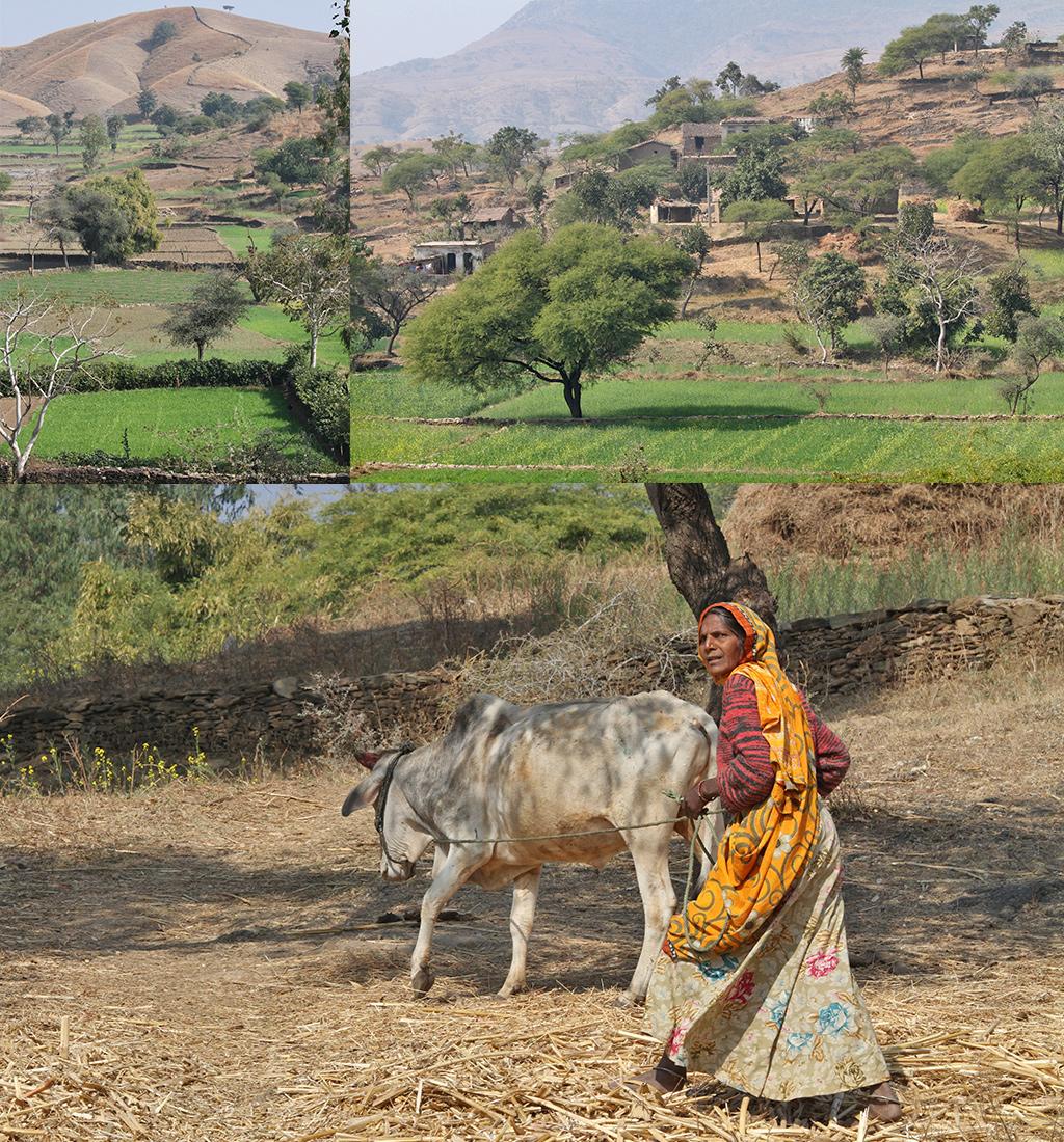 platteland ten zuiden van Udaipur
