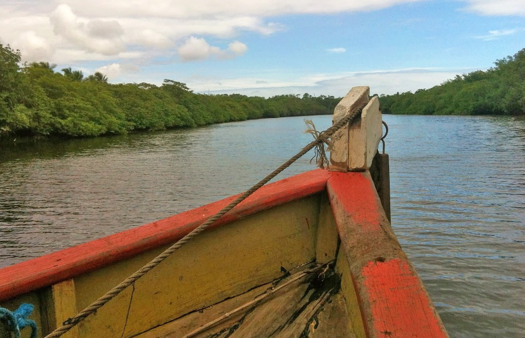 rivier boottocht Brazilië