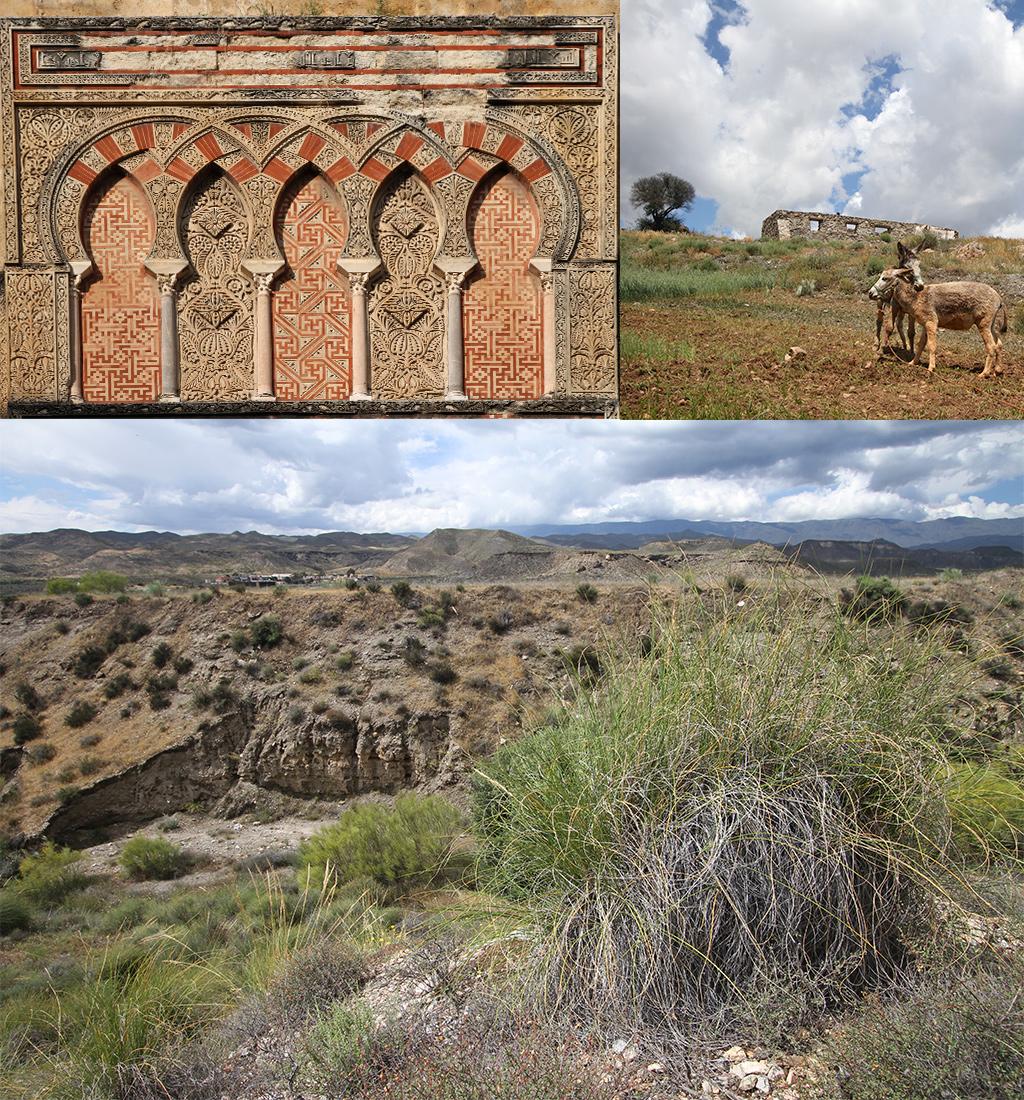 roadtrip Andalusië de perfecte route