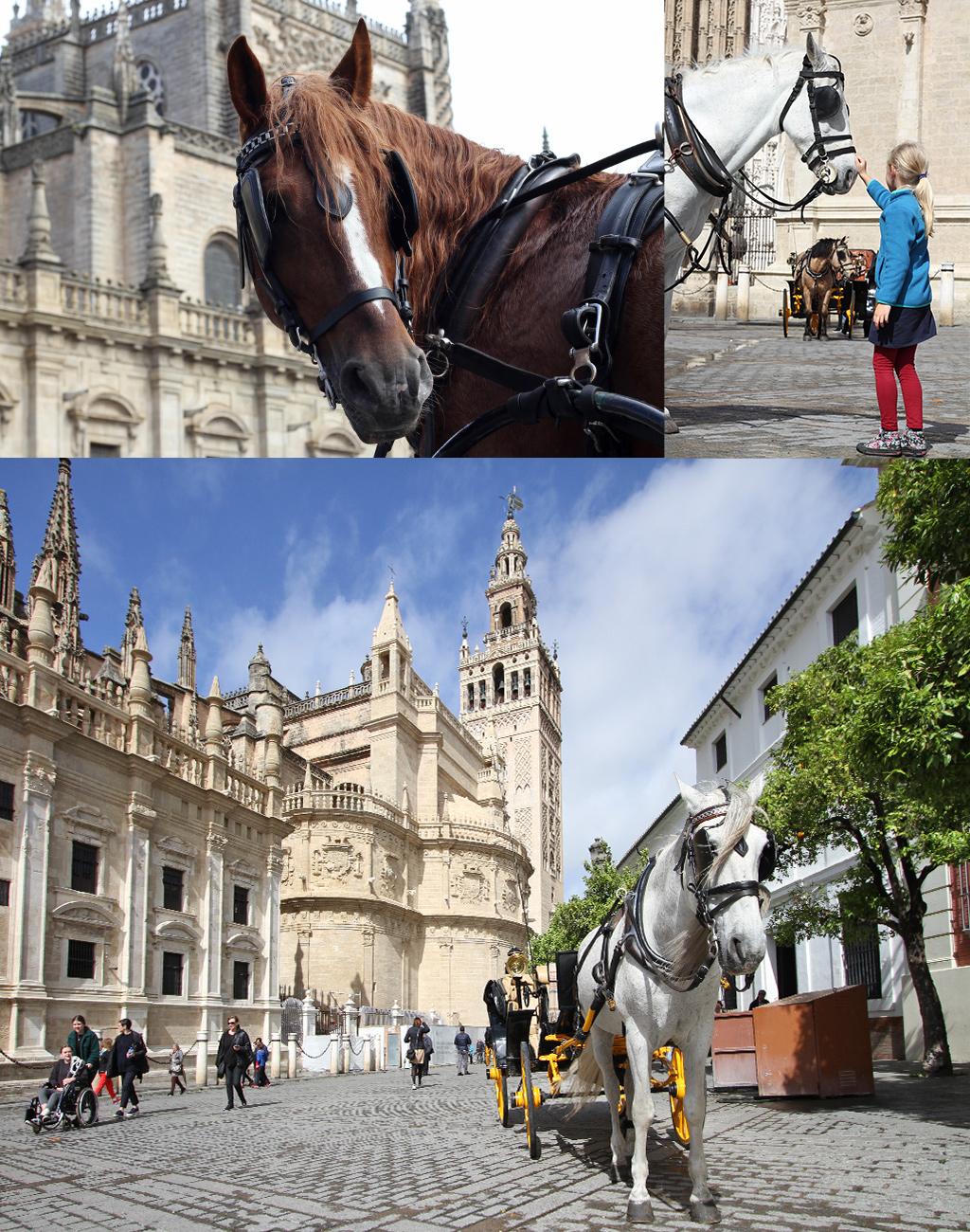 stedentrip Sevilla met kinderen - paardenkoets