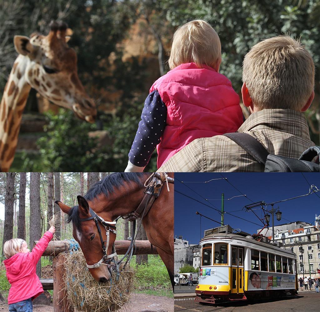 Stedentrip met kinderen afwisseling activiteiten