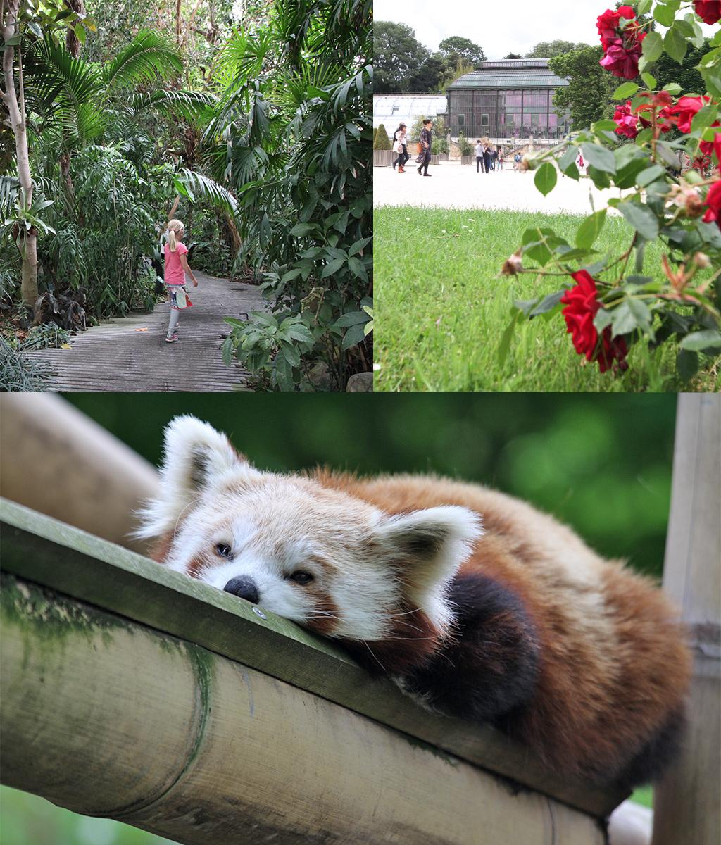 tropische plantenkas en dierentuin Parijs