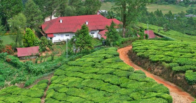 vanuit Munnar Kerala verkennen