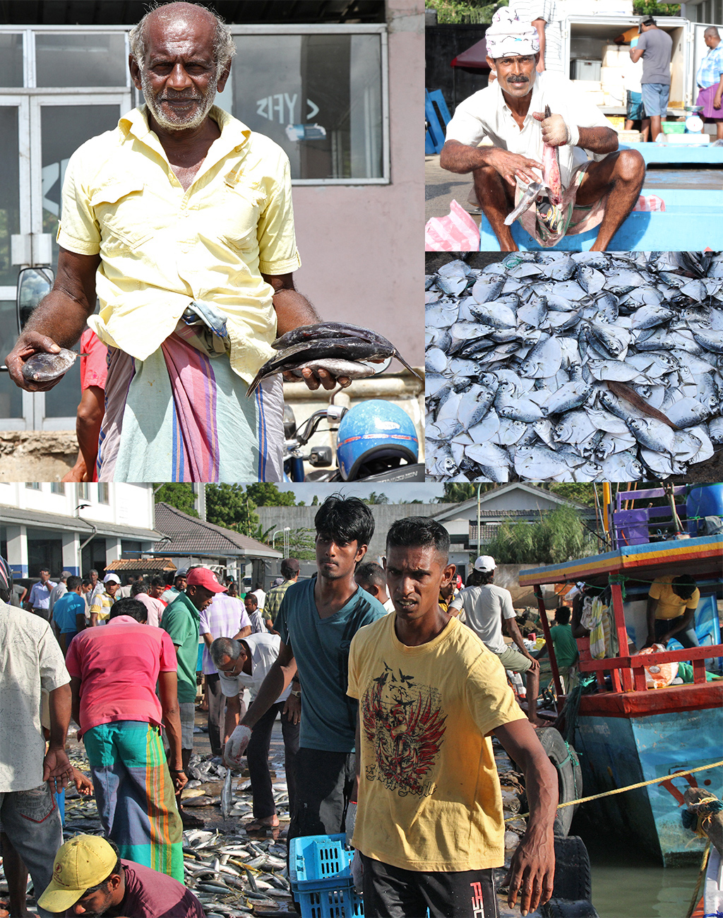 vissershaven Tangalle vissers