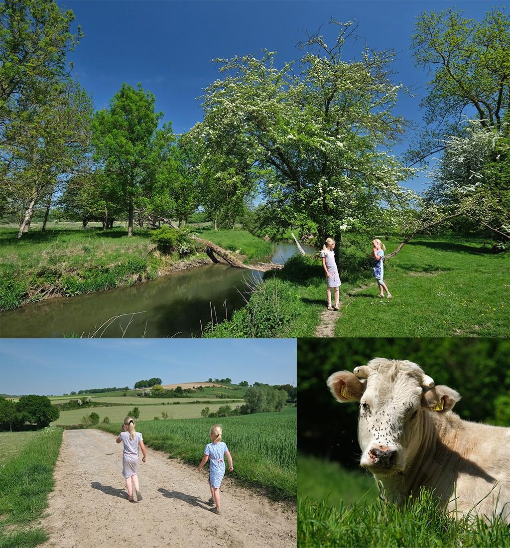 wandelen met kinderen in het Geuldal