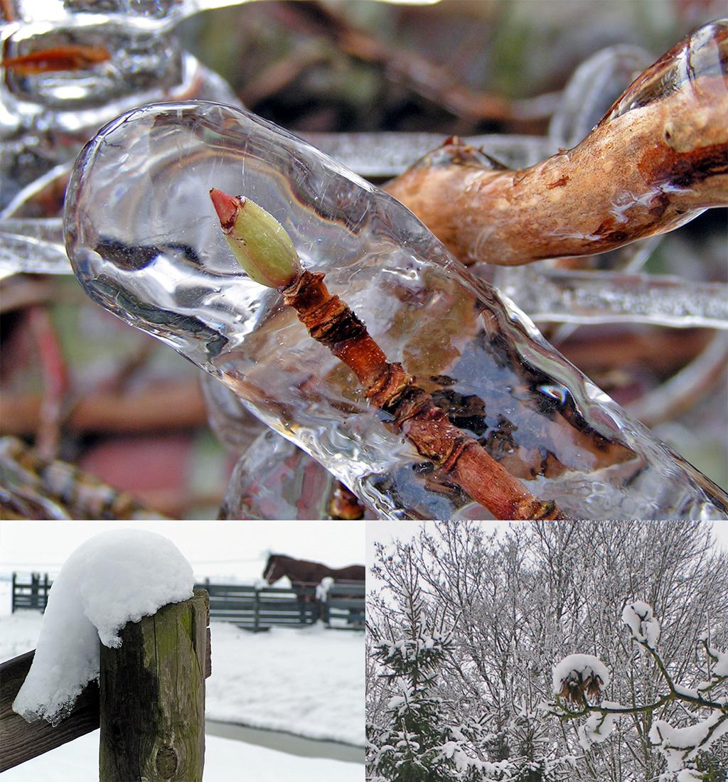 winterbanden Duitsland verplicht bij winterse omstandigheden